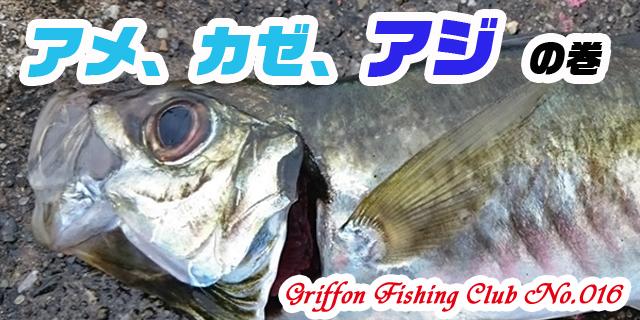 アメ、カゼ、アジの巻【釣行記】