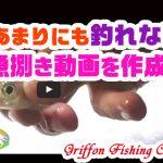 あまりにも釣れないから魚捌き動画を作成!の巻【釣行記】