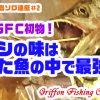 KINGの淡路島ソロ遠征#2 またまたGFC初物!サゴシの味は釣った魚の中で最強!の巻【釣行記】