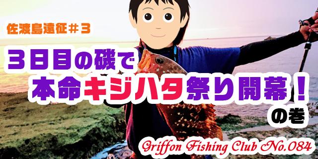 佐渡島遠征#33日目の磯で本命キジハタ祭り開幕!の巻