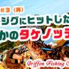 佐渡島遠征#3(再)足元でジグにヒットしたのはまさかのタケノッティ!の巻【釣行記】